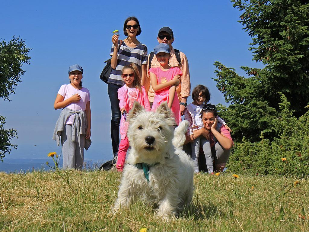 Urlaub mit Hund am Hintersee - Ramsau