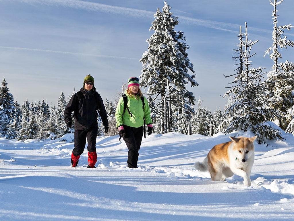 Urlaub mit Hund - Bayern